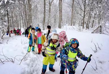 东北冬令营雪谷寻宝雪乡穿越初学滑雪识东北民俗之旅(7日行程)