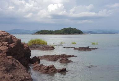 荒岛求生 捕猎 取水 担架制作 海岛露营 来一场真实的海岛生(3日行程)