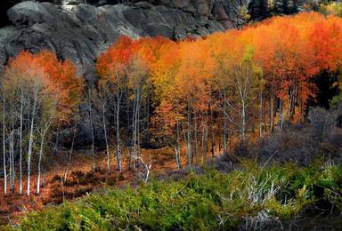 喇叭沟门  五彩斑斓的喇叭沟门 赏白桦林 走进秋天的童话(1日行程)