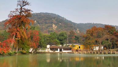 徒步苏州天平山 赏红枫银杏 反穿灵白线 寻找那一抹惊艳的秋(1日行程)