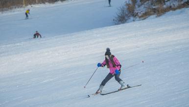 雪乡 亚布力滑雪(3日行程)