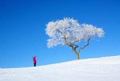 坝上冰雪秘境(5日行程)
