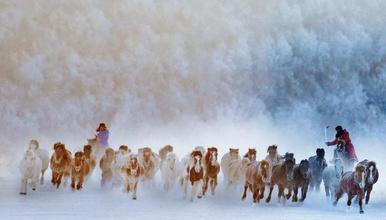 坝上冬雪摄影游(6日行程)