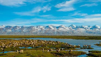 自驾大环线  终极丙察察  阿里 新疆  新藏线  独库公路(25日行程)