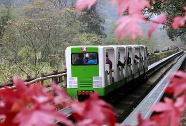 高端徒步穿越张家界两大原始森林公园 私家小团 私人定制(2日行程)