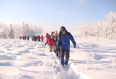 新年元旦雪乡 雪谷 东升羊草山徒步穿越四日游免费送火车票(4日行程)