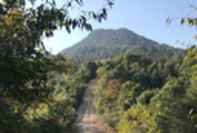 阳光正好 秋意渐起 绝美户外净土 大禹谷娘娘山 长乐林场穿越(1日行程)