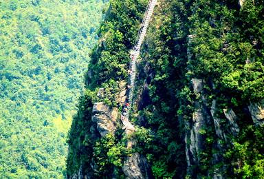 梦幻仙境金子山垂直天梯登山 挑战最高玻璃桥天梯 森林滑道(1日行程)
