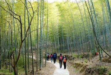从化星溪线 竹海徒步 纵意山野 吃竹筒饭 最初级户外体验(1日行程)