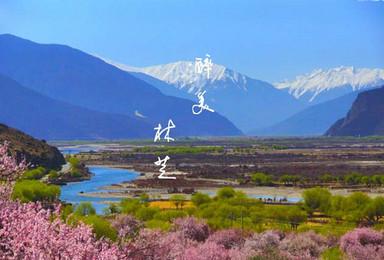 阳春三月看金川醉美梨花 赏林芝十里桃花 318最美景观大道(10日行程)