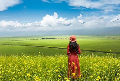 青甘大环线 带你领略最美的壁画和地质地貌(7日行程)