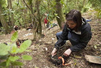 斜耳兔首期万人植树节 种下一棵树 拒绝流浪地球 让我们有希望(1日行程)