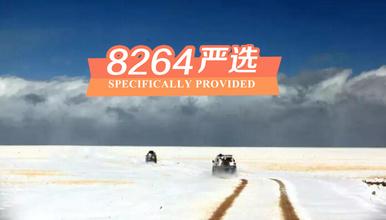西藏阿里大北线 冈仁波齐转山 40冰川探秘(16日行程)