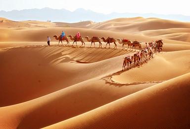 重征丝绸之路,探索苍凉大漠上的不朽文明(8日行程)