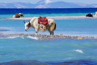 滇藏线雪域高原穿越之旅,两大圣湖,圆你一个西藏梦(10日行程)