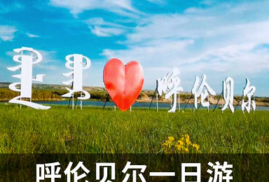 呼伦贝尔草原旅游1日游 家庭旅游 亲友组团游 旅游预订(1日行程)