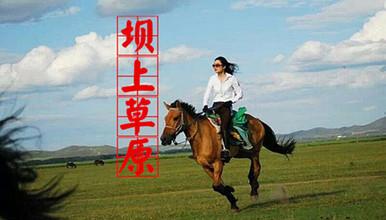 周末 中国马镇 坝上草原 骑马 免费烤全羊 灯光秀,篝火狂欢(3日行程)