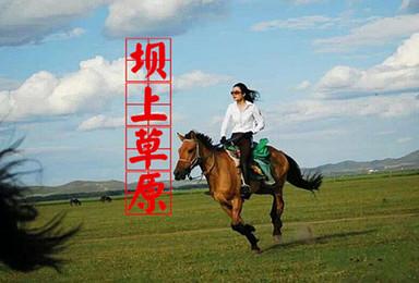 周末/端午 壩上草原 騎馬 免費烤全羊 篝火狂歡!(3日行程)