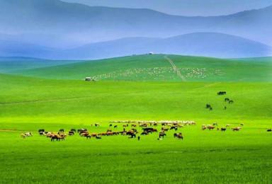 周末锡林郭勒草原乌兰布统草原塞罕坝国家一号风景大道3日游。(3日行程)