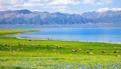 浓情北疆  喀纳斯 赛里木湖 环天山经典线路深度纯玩(9日行程)