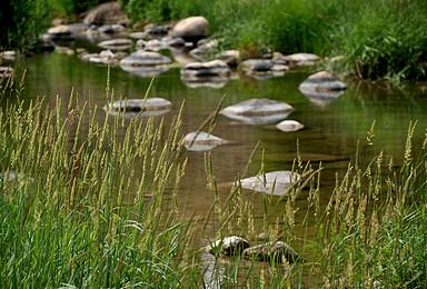 亲子户外 清水河|行走于山野河谷之间,蹚水、捉鱼、野餐(1日行程)