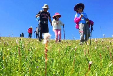四姑娘山亲子户外徒步游 四姑娘山采蘑菇 搭帐篷 野外生存(6日行程)