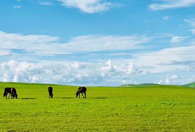 海拉尔-室韦-太极图-黑山头--满洲里-阿尔山7日精品小团(7日行程)