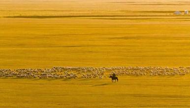 呼伦贝尔 摄影|全程越野车 穿越大草原深处 横穿大兴安岭(7日行程)