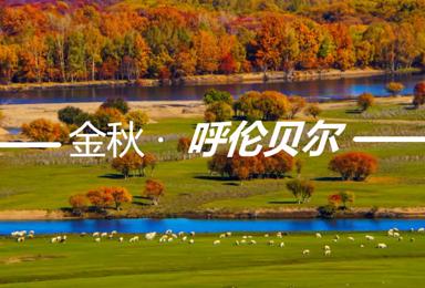 呼伦贝尔 摄影 全程越野车 穿越大草原深处 横穿大兴安岭(7日行程)