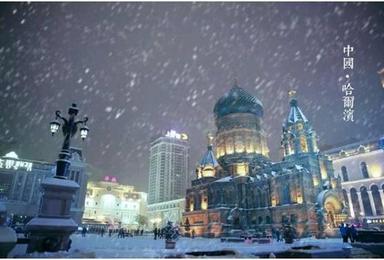 冰雪假日 哈尔滨 雪乡 长白山 雾凇岛欢乐东北活动(7日行程)