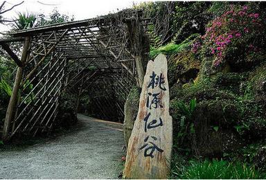 桃园仙谷踏青赏瀑 登山 一线天 鸳鸯槐 看最壮观的高山流水(1日行程)