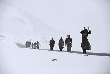 阿里 冈仁波齐 转山 一错再错 或双湖 冰川 雪山(15日行程)