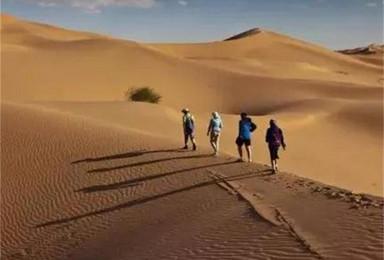 库布齐 老牛湾清明节 五一 大漠 黄河 大峡谷 黄土高原(4日行程)