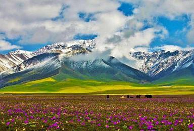 北疆大环线纯玩深度体验13日游(13日行程)