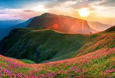 花季贵州  漫步天上花海 探访神秘长角苗之乡 黄果树瀑布(6日行程)