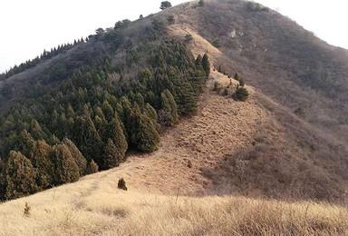 狐狸峪|穿越漫山遍野金黄草甸 感受大自然的气息(1日行程)