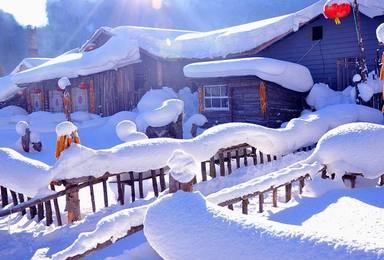哈尔滨集合漠河白桦龙江第一湾红村北极村圣诞村深度纯玩(5日行程)