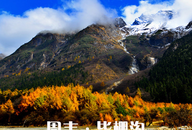 [周末丨毕棚沟]毕棚沟-甘堡藏寨-桃坪羌寨三日游(3日行程)