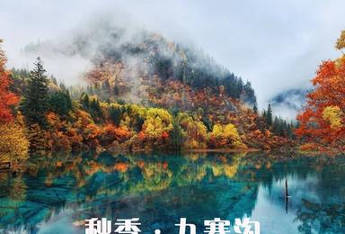 [秋季丨九寨沟三日]阔别两年,走进人间仙境九寨沟(3日行程)