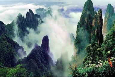 大美莽山 漫步悬空栈道、观莽山云海、打卡网红悬崖温泉(2日行程)