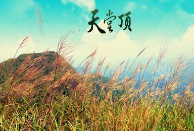 登广州第一峰(1日行程)