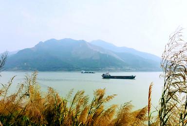 船渡西江羚羊峡品美食,徒步古栈道,景色可媲美三峡(1日行程)