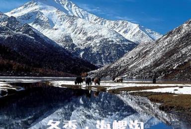 [冬季丨海螺沟]海螺沟·磨西古镇冰雪盛宴三日游(3日行程)