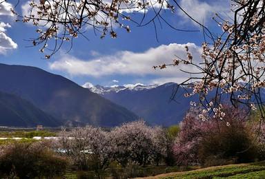 林芝桃花节丨西藏户外徒步摄影(8日行程)