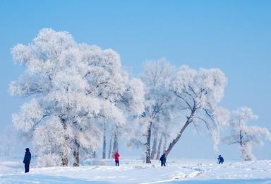 东北12人团 亚布力万科滑雪 中国雪乡 雾凇岛 泡温泉(7日行程)