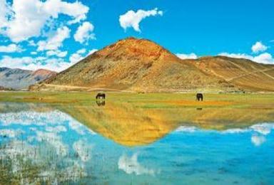 西藏珠峰 奇林峡 定结湿地 扎什伦布寺9座商务纯玩之旅(4日行程)