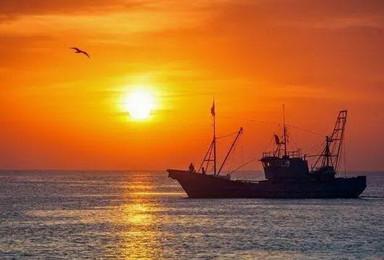 周末自驾黄骅出海渔猎 温地游船赏鸟休闲2日(2日行程)
