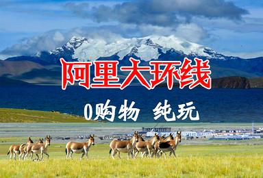 阿里大北线 越野之旅 拼车自由行(13日行程)