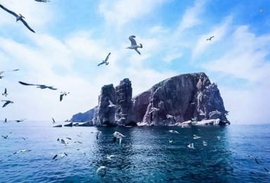 海上仙山长岛 蓬莱 万鸟岛 候叽岛 庙岛海豹苑 月亮湾海岛游(4日行程)