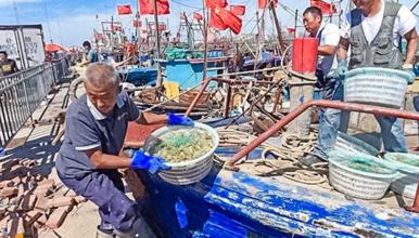 天津滨海出海打渔 包船出海打渔 体验渔民生活 打卡网红图书馆(1日行程)